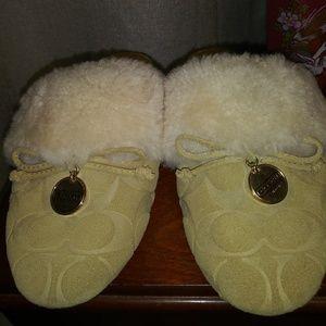 56c471e992aa Women Classy Slippers on Poshmark